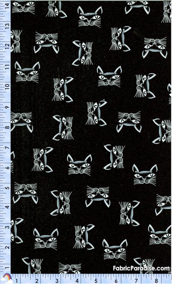 CAT-cats-Y39