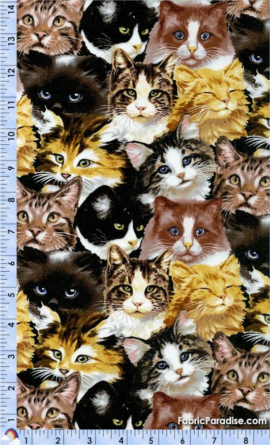 CAT-furrever-Y161