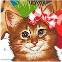 CAT-cats-P291