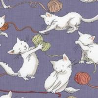 CAT-cats-R707