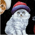 Adorable Pets - Tossed Cats in Hats on Black