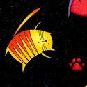 Tossed Rainbow Cartoon Cats on Black
