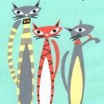 CAT-cats-W417