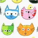 CAT-cats-X538