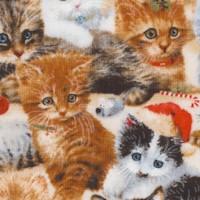 Fireside Kittens