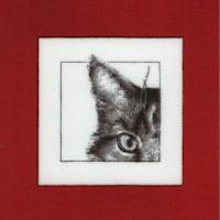 Curious Kitties #2 - Peek a Boo!
