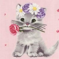 Furry Princess - Adorable Kittens on Pink