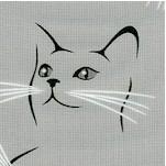 CAT-furrever-Y162