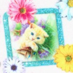 Kitty Glitter - Tossed Kittens in Frames with Flowers