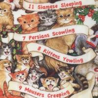 CAT-kittens-R535