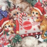 Kitty Christmas - Packed Holiday Kitties by Kayomai Harai