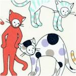 CAT-kitty-Y269