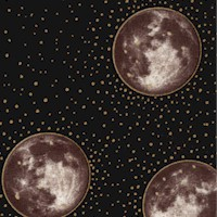 CELES-moons-R512
