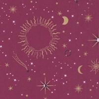 CELES-orbit-R583
