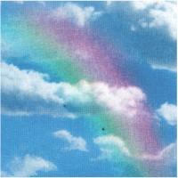 CELES-rainbows-Z348