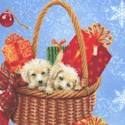 Santa Paws - Adorable Holiday Dogs by Sarah Summers