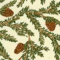 Winter Story - Pine Trees on Cream by Deb Strain