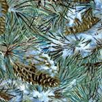 CHR-pinecones-W500