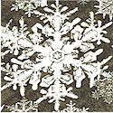 Wintergraphix - Large Snowflakes in Black  White and Gray by Jason Yenter- LTD. YARDAGE AVAILABLE (.