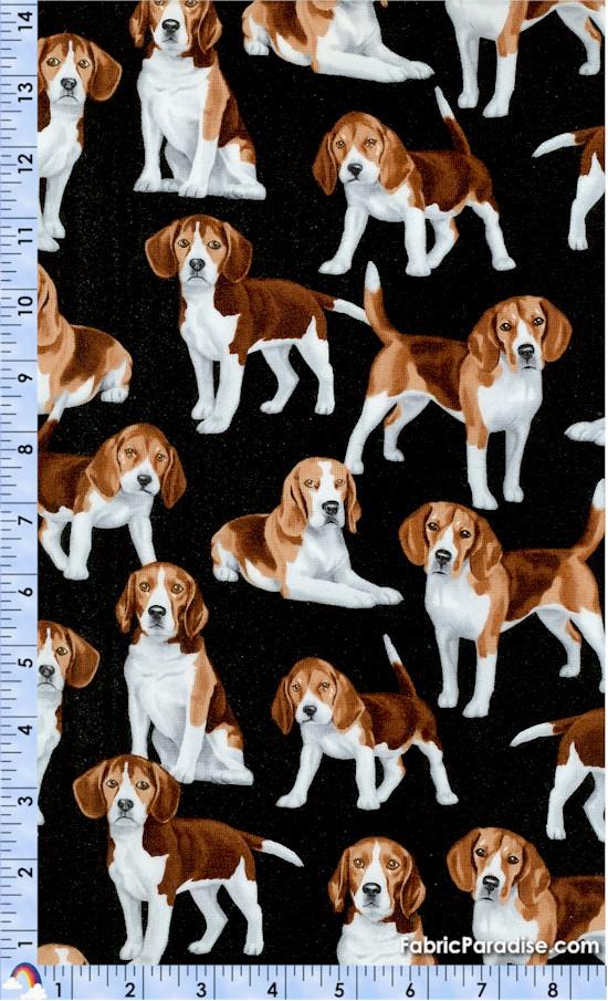 DOG-beagles-X711
