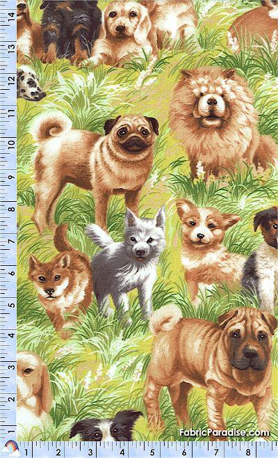 DOG-dogs-L976