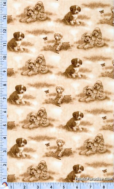 DOG-dogs-S268