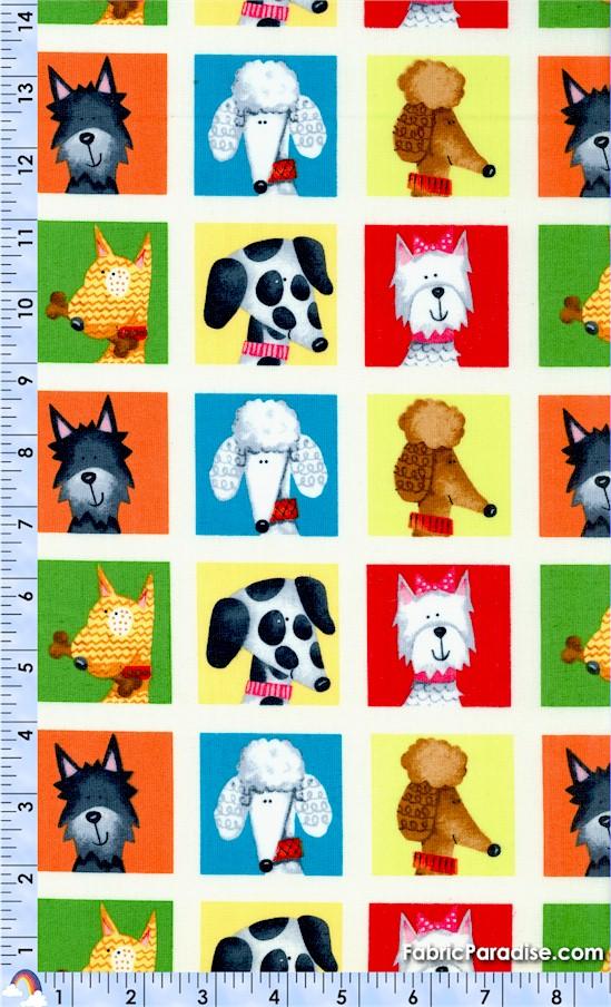 DOGS-dog-X657