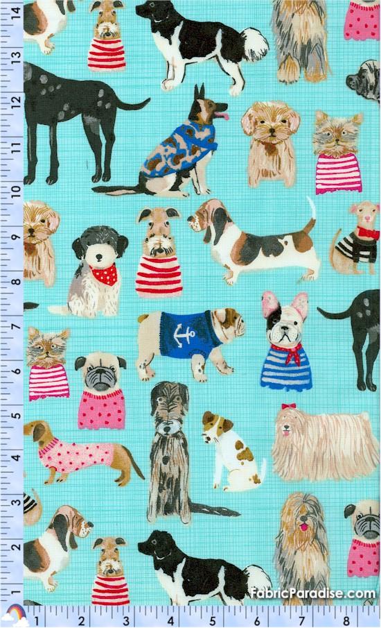 DOG-pets-X810