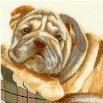 Loveable Bulldog Scenes on Cream