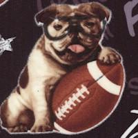 DOG-bulldogs-Z818