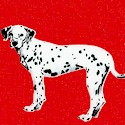 Hook & Ladder - Dalmatian Dogs on Red