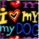 DOG-dog-G723