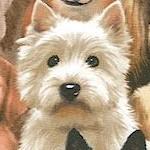 DOG-dogs-L98