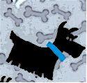DOG-dogs-M118