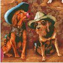 DOG-dogs-P570