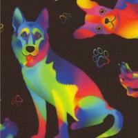 DOG-dogs-R444