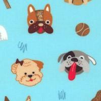 DOG-dogs-R563