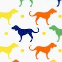DOG-dogs-U524