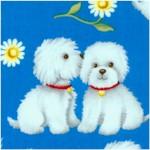 DOG-dogs-Y275