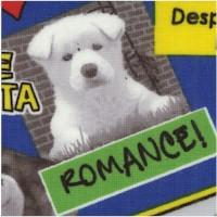 DOG-dogs-Z286