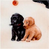 Pups in the Garden by Robert Giordano