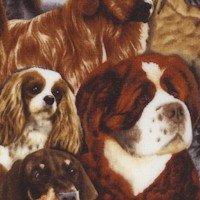 Pedigree - Packed Realistic Dog Portrait