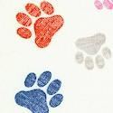DOG-paws-U19