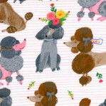 Ooh La La - Stylish Poodles on Pink by Carolyn Gavin