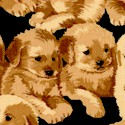 Picture This - Rows of Adorable Puppies on Black (DOG-puppies-P279)