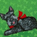 DOG-scotties-S658