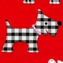 DOG-scotty-U322