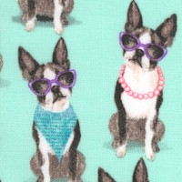 DOG-terrier-R619