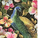 Reversible Quilted, Peaceful Plumes Gilded Peacock Floral