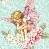 Songs of the Flower Fairies - The Dancing  Flower Fairies